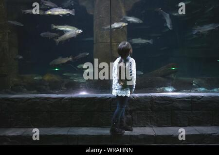 Full Length Rear View Of Girl Visiting Aquarium - Stock Photo