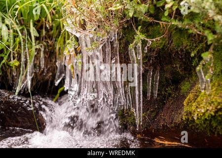 Frozen water splash at Mount Shasta sacred panther meadow landscape, California, Usa Stock Photo