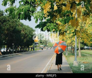 Rear View Of Woman With Umbrella Walking On Sidewalk Against Trees - Stock Photo