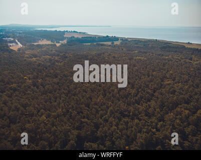 forest at baltic sea - picture taken by a drone - Stock Photo