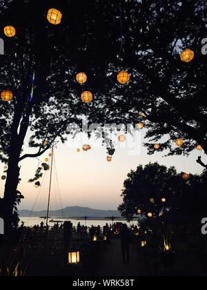 Illuminated Lantern Hanging From Trees In Park - Stock Photo