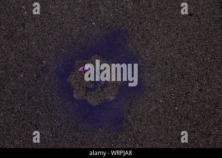 High Angle View Of Om Symbol On Street - Stock Photo