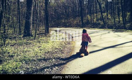 Rear View Of Girl Carrying Stuffed Toy While Walking On Road Amidst Trees - Stock Photo