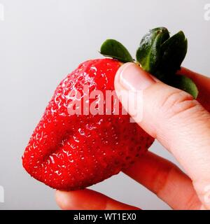 Cropped Imaged Of Person Holding Strawberry Against White Background - Stock Photo