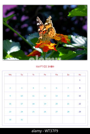 calendar, 2020, per month, 12 photos, butterflys, collection 2 - Stock Photo