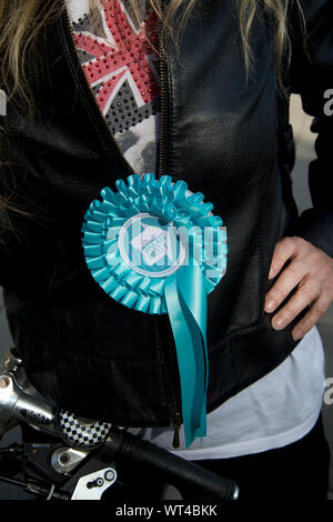 Protests in Parliament Square on 7th September 2019. Leave protester with Brexit party rosette - Stock Photo