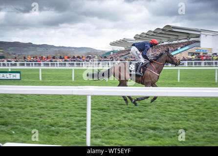 Horses race to the finish line at the Cheltenham festival. The Uk's premier National Hunt race meeting and a mecca for an army of traveling Irish fans