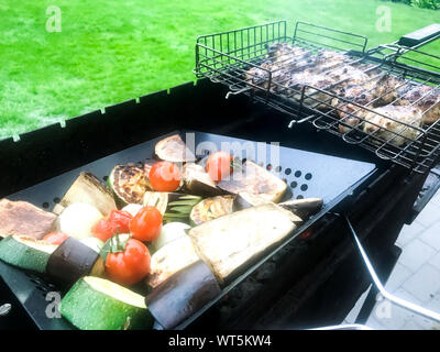 Chunks of meat and vegetables are grilled. Studio Photo - Stock Photo