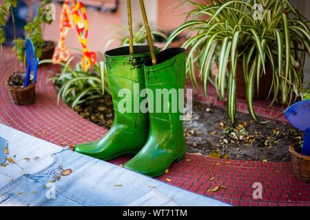 High Angle View Of Green Rubber Boots By Plants - Stock Photo