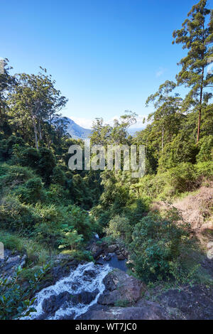 A small river running through a forest full of green foliage covered trees on a sunny cloudless autumn day in New South Wales, Australia - Stock Photo