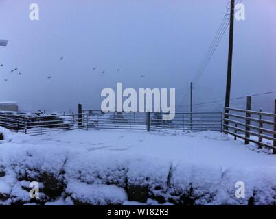 Fence On Snow Covered Field Against Sky - Stock Photo