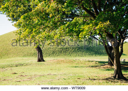 Gyeongju Gyerim and royal tomb in Gyeongju, Korea - Stock Photo
