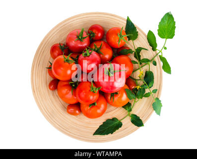 Wooden dish with different ripe tomatoes on white background. Studio Photo - Stock Photo