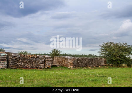 Wood stack on a meadow in the Waldviertel, Austria, on a summer day - Stock Photo