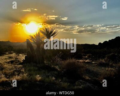 Scenic View Of Landscape Against Cloudy Sky During Sunset - Stock Photo