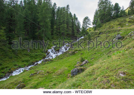 streams on the Alps of South Tyrol - Stock Photo