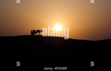 Silhouette Camel Cart On Desert Against Sky During Sunset - Stock Photo