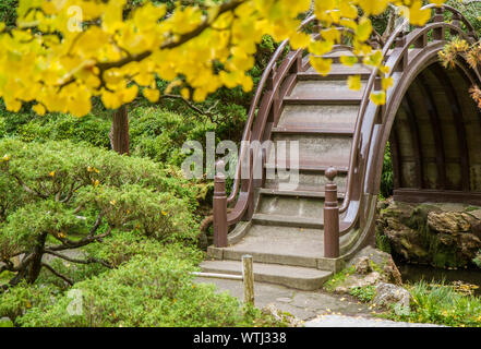 Japanese footbridge framed by yellow ginko biloba leaves in a park. Bridge is brown, green foliage on lower left side of frame. - Stock Photo