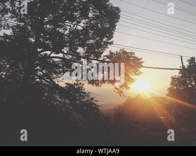 Idyllic Shot Of Silhouette Trees Against Sky During Sunrise - Stock Photo