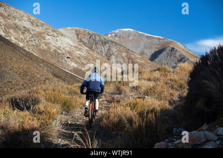 girl mountain biking near Porters skifield, New Zealand - Stock Photo