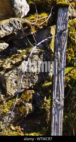 Close-up Of Barbed Wire And Wooden Post On Stones - Stock Photo