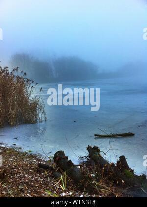 Foggy Lake In Winter - Stock Photo