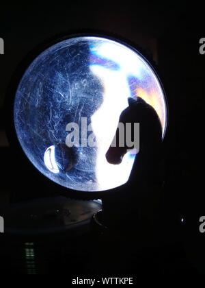 Horse Toy In Front Of Crystal Ball - Stock Photo