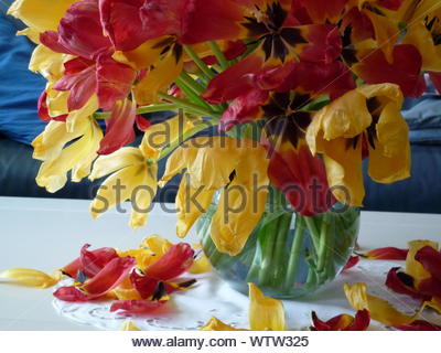 Close-up Of Bunch Of Tulips In Vase - Stock Photo