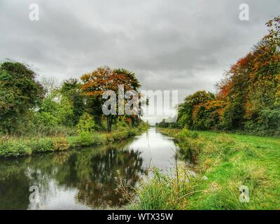 River Flowing Through Green Landscape And Trees - Stock Photo