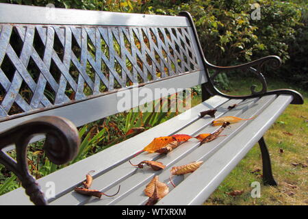 Dead leaves on a bench in a garden during autumn - Stock Photo