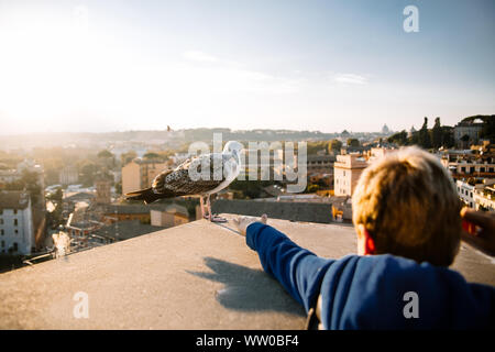 boy reaching hand to bird close-up. A large white seagull on which the down and a palm stretched to the bird. Photo taken in the historical part of Ro - Stock Photo
