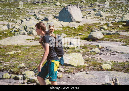 July 26, 2019. Norway. hikers with dogs on the Trolltunga. Dog hiking in Norway. hiking, trekking, lifestyle with pet Norway concept. Hikers with dogs - Stock Photo
