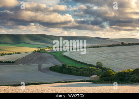 The rolling hills of the South Downs National Park near Lewes in East Sussex - Stock Photo