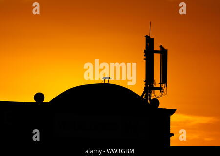 A mobile phone transmitter on the top of a building in Leeds, silhouetted against an orange sunlit sky - Stock Photo