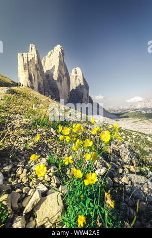 Amazing panoramic view from Tre Cime di lavaredo over the Dolomites mountain chain - Stock Photo