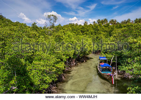 Long tail boat in the mangrove - Thailand - Stock Photo