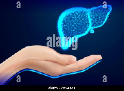 Hand Care. Closeup of female hand in doctors coat ponting or holding Liver, Heart, Human anatomy. Medicine, healthcare and advertisement concept - Stock Photo