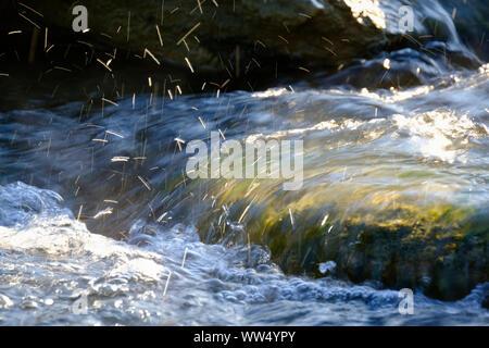 splashing river wave, Isar, Isar floodplains, Geretsried, Upper Bavaria, Bavaria, Germany - Stock Photo