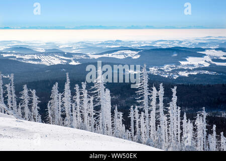 View from the Lusen in winter, in the back the Alps, Bavarian Forest National Park, Lower Bavaria, Bavaria, Germany - Stock Photo