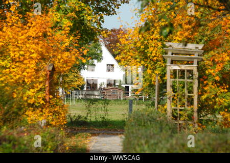 Residential house, way in autumn, Oberneuland, Bremen, Germany, Europe - Stock Photo