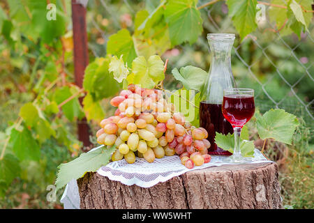 Arrangement in the garden with blue and green grapes, a glass of red drink and a bottle. Still life with fruit. - Stock Photo