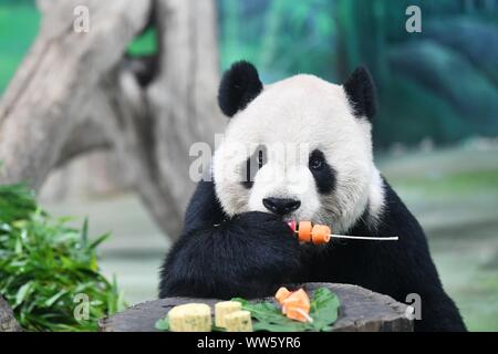 Taipei's Taiwan. 13th Sep, 2019. Giant panda Tuantuan eats skewered fruits and vegetables at Taipei Zoo in Taipei, southeast China's Taiwan, Sept. 13, 2019. Mooncakes and skewered fruits and vegetables were specially made by the staff of Taipei Zoo for giant pandas to celebrate the the Mid-Autumn Festival. Credit: Chen Bin/Xinhua/Alamy Live News - Stock Photo