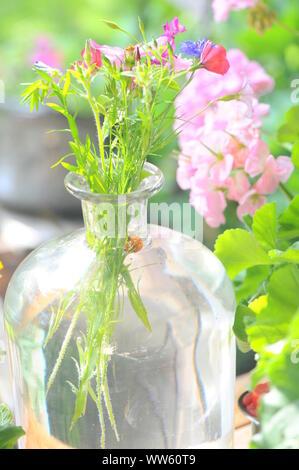 Flowers in glass vase, still life - Stock Photo