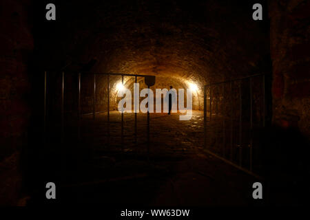 Basement vault in the castle Hartenfels in Torgau, Saxony, Germany - Stock Photo