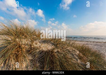 On the beach of Juliusruh, Baltic Sea, Rügen, Mecklenburg-West Pomerania, Germany - Stock Photo
