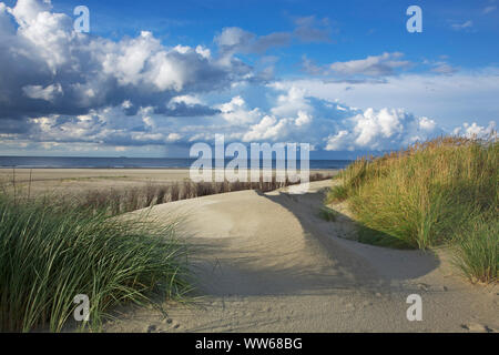 View from the Haaksdünen in the west of the island Juist on the North Sea. - Stock Photo