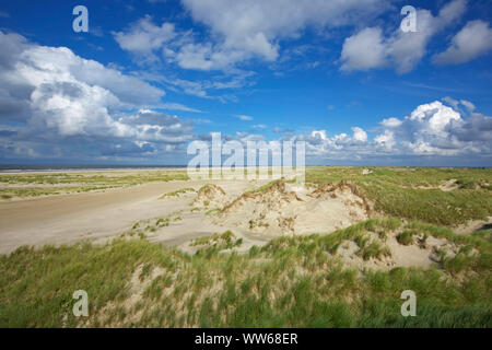 View above the dune landscape in the east of the island Norderney. - Stock Photo