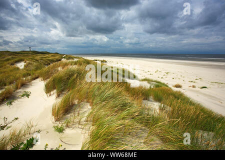 Dune landscape at the Ostbake on the north beach of the island Langeoog. - Stock Photo