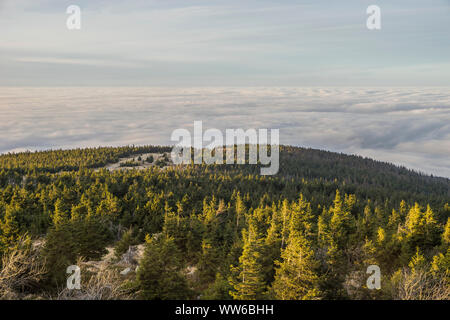 Germany, Saxony-Anhalt, Harz National Park, Brocken at inversion weather in the evening - Stock Photo