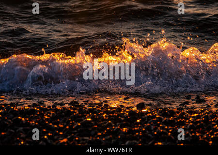 Darss West Beach, Baltic Sea, shores, waves, evening light - Stock Photo